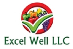 Excel Well